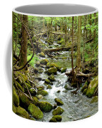Smoky Mountain Stream 1 Coffee Mug