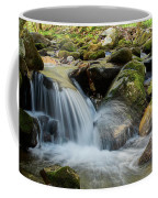 Flowing Stream #3, Smoky Mountains, Tennessee Coffee Mug