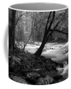 Smoky Mountain Stream Coffee Mug