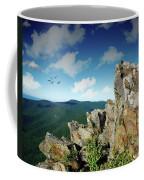 Smoky Mountain View Coffee Mug