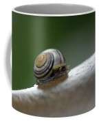 Snail On Rock Coffee Mug