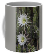 Snake Cactus Flowers Coffee Mug
