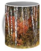 Snake River Canyon Coffee Mug