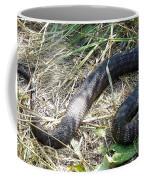 Snake So Pretty Coffee Mug