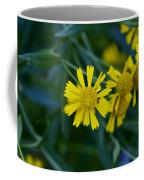 Sneezeweed Coffee Mug