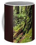 Snoqualmie National Forest Coffee Mug
