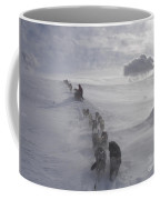 Snow And Clouds Coffee Mug