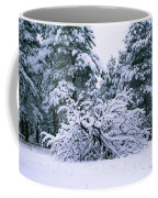 Snow Burdened Tree In The Flatirons Coffee Mug