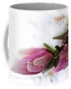 Snow Capped Magnolia Blossoms Coffee Mug