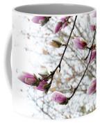 Snow Capped Magnolia Tree Blossoms 2 Coffee Mug