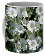 Snow In Summer Flowers Coffee Mug