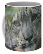 Snow Leopard 10 Coffee Mug