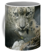 Snow Leopard 11 Coffee Mug