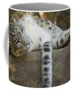 Snow Leopard Nap Coffee Mug