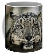 Snow Leopard Upclose Coffee Mug