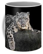 Snow Leopard Xxii Coffee Mug