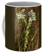 Snow-on-the-mountain Coffee Mug