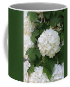 Snowball Tree With Delicate Leaves Coffee Mug