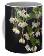 Snowbell Tree Coffee Mug