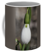 Snowdrop #2 Coffee Mug