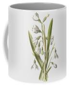 Snowdrop And Snowflake Coffee Mug