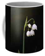 Snowdrops In Water Coffee Mug