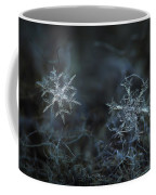Snowflake Photo - When Winters Meets - 2 Coffee Mug by Alexey Kljatov
