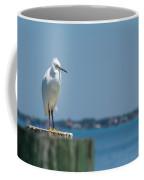 Snowy Bay Coffee Mug