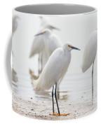 Snowy Egret And Friends Coffee Mug