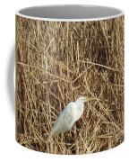 Snowy Egret In Tall Grasses Coffee Mug