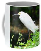 Snowy Egret In The Everglades Coffee Mug