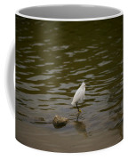 Snowy Egret Coffee Mug