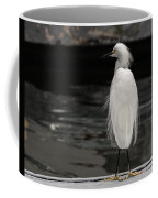 Snowy Egret Looking For Next Meal Coffee Mug