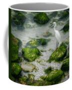 Snowy Egret On Mossy Rocks Coffee Mug