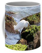 Snowy Egret  Series 2  1 Of 3  The Catch Coffee Mug