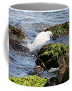 Snowy Egret  Series 2  2 Of 3  Preparing Coffee Mug