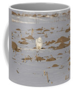 Snowy Owl 2016-9 Coffee Mug