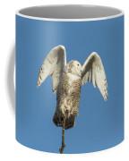 Snowy Owl 2018-17 Coffee Mug