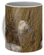 Snowy Owl In Grass Coffee Mug