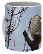 Snowy Owl Preening Coffee Mug