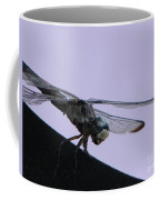 So Many Bugs So Little Time Coffee Mug