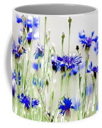 So Many Flowers, So Little Time Coffee Mug