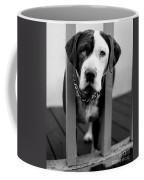 So Sad Coffee Mug