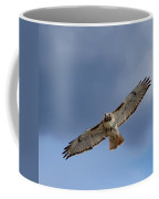Soaring Red Tail Square Coffee Mug