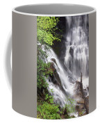 Soco Falls 2 Coffee Mug