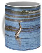 Socotra Cormorant Coffee Mug