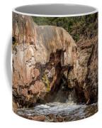 Soda Dam 2 Coffee Mug