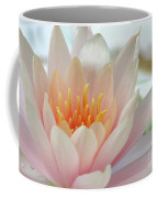 Soft And Delicate Water Lily Coffee Mug