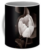 Soft And Sepia Tulip Coffee Mug