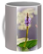Soft Beauty Coffee Mug